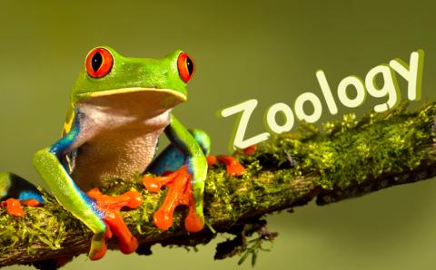 BIHAR UNIVERSITY (Muzaffarpur)Zoology Exam Important Questions